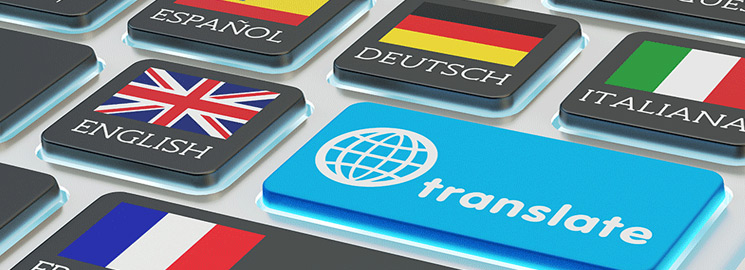Online Translation Privacy Risks